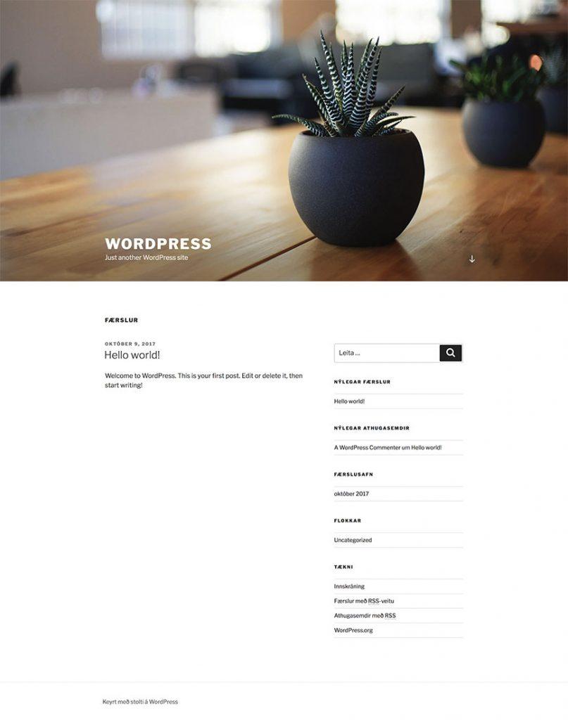 WordPress vefur staðlað útlit